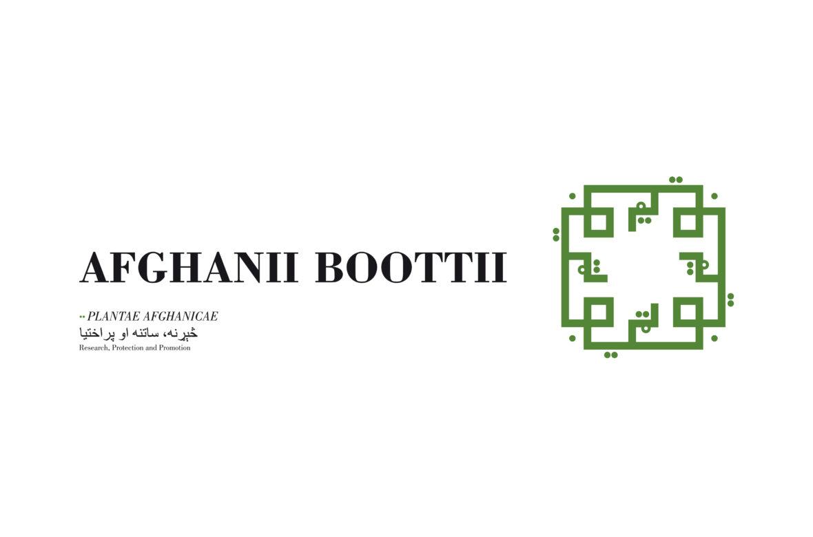 afghanii-bootii
